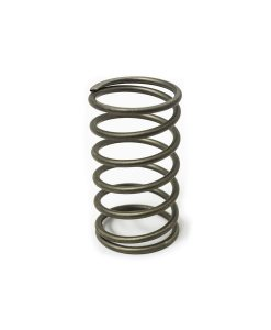 Valve Spring, AGM for sale